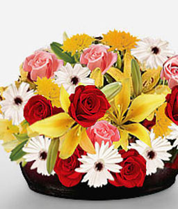 Pot of Love-Mixed,Pink,Red,Yellow,Gerbera,Lily,Mixed Flower,Rose,Arrangement