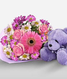Gerberas N Roses With Teddy-Blue,Pink,Daisy,Gerbera,Mixed Flower,Rose,Teddy,Bouquet,Hamper