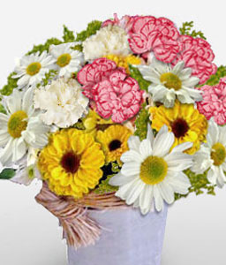 Florianopolis Fusion-Mixed,Mixed Flower,Arrangement