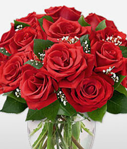Dozen Roses in Vase-Red,Rose,Arrangement
