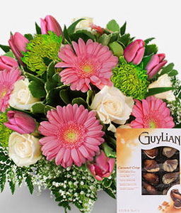 Valentines Gift-Green,Pink,White,Chocolate,Daisy,Gerbera,Rose,Bouquet