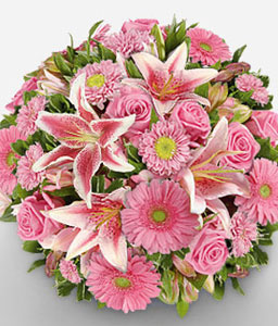 Pink A Boo-Pink,Daisy,Gerbera,Lily,Mixed Flower,Rose,Bouquet