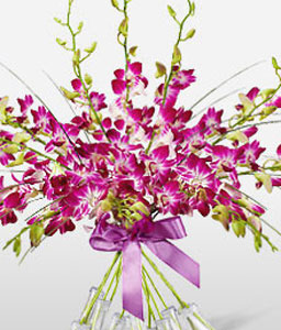 Orchid Magnificence-Pink,Orchid,Bouquet