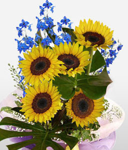 Sunny Treats-Yellow,SunFlower,Bouquet