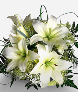Kingdom of Heaven-White,Lily,Arrangement