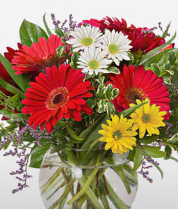One Fine Day-Mixed,Red,White,Chrysanthemum,Gerbera,Bouquet