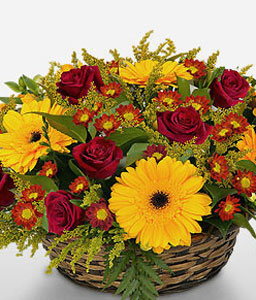 Rising Sun-Mixed,Red,Yellow,Chrysanthemum,Gerbera,Mixed Flower,Rose,Arrangement,Basket