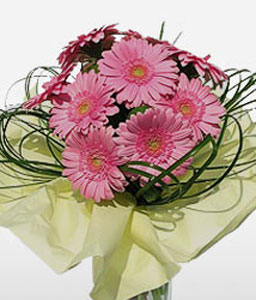 Royal Wilanow-Pink,Daisy,Gerbera,Bouquet