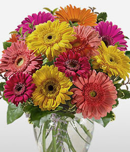 Assorted Gerberas-Mixed,Orange,Pink,Red,Yellow,Daisy,Gerbera,Arrangement