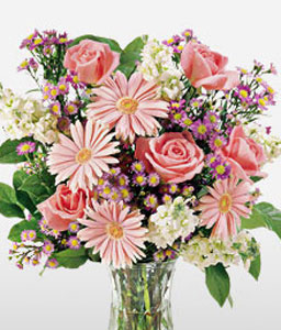 Sweeter Than Sugar-Pink,Daisy,Gerbera,Mixed Flower,Rose,Arrangement