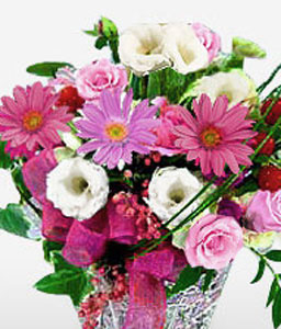 Floral Regards-Pink,Red,White,Carnation,Daisy,Gerbera,Arrangement,Basket