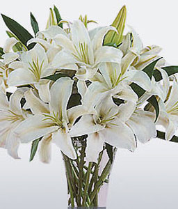Pearl Perfection-White,Lily,Arrangement