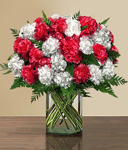 Joyful Blooms-Red,White,Carnation,Bouquet