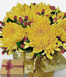 Golden Glory-Yellow,Chocolate,Dahlia,Arrangement