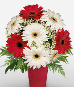 Best Wishes-Mixed,Red,White,Gerbera,Arrangement