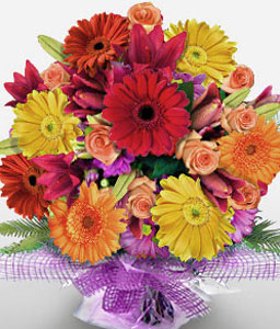 Mardi Gras-Mixed,Orange,Red,Yellow,Daisy,Gerbera,Bouquet