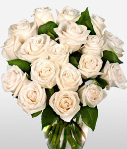 One Dozen White Roses