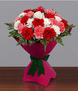 Carnation Carnival<Br><Font Color=Red>Mixed Color Carnation Bouquet</Font>