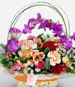 Queens Tiara-Mixed,Peach,Purple,Red,Alstroemeria,Carnation,Orchid,Arrangement,Basket