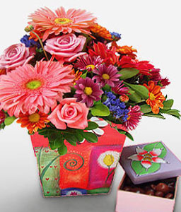 Fiesta-Pink,Red,Chocolate,Chrysanthemum,Daisy,Gerbera,Mixed Flower,Rose,Arrangement,Hamper