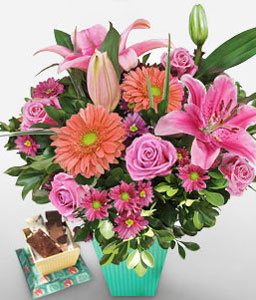 Gamay-Pink,Yellow,Carnation,Chocolate,Lily,Mixed Flower,Rose,Bouquet,Hamper