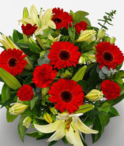 Myriad Flores-Red,White,Carnation,Gerbera,Lily,Mixed Flower,Bouquet