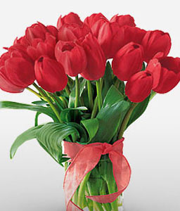 Vivacious Tulips-Red,Tulip,Bouquet