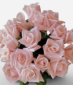 Perfectly Peachy Roses-Peach,Rose,Bouquet