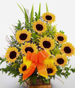 Astonished-Yellow,SunFlower,Arrangement