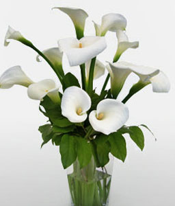 Glowing Bride-White,Lily,Arrangement