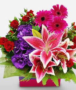 Mixed Flowers In Box-Mixed,Pink,Purple,Red,Daisy,Gerbera,Lily,Mixed Flower,Rose,Arrangement
