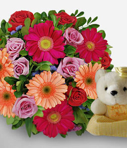 Garden Of Love-Peach,Pink,Red,Daisy,Gerbera,Rose,Teddy,Bouquet