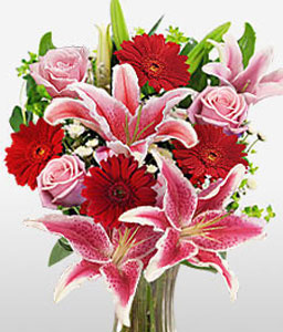 Modern Muse-Mixed,Pink,Red,Daisy,Gerbera,Iris,Mixed Flower,Rose,Arrangement