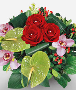 Grace-Green,Mixed,Pink,Red,Anthuriums,Mixed Flower,Orchid,Rose,Arrangement