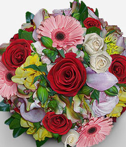 Chapultepec Charms-Mixed,Pink,Red,White,Yellow,Daisy,Gerbera,Lily,Rose,Bouquet