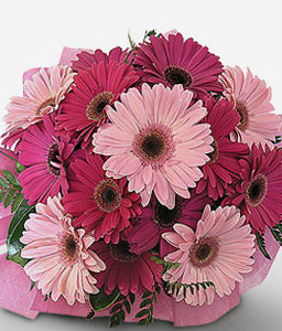 Valentines Flowers-Pink,Daisy,Gerbera,Bouquet