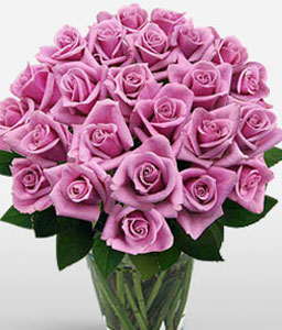 Lavish Love - Two Dozen Roses-Pink,Rose,Arrangement