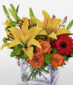 Pop Art-Mixed,Orange,Pink,Yellow,Rose,Mixed Flower,Lily,Gerbera,Arrangement