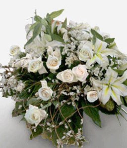Peaceful Comfort-White,Rose,Sympathy