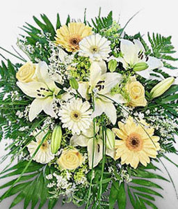 Sogni Eleganti-White,Yellow,Daisy,Gerbera,Lily,Rose,Bouquet