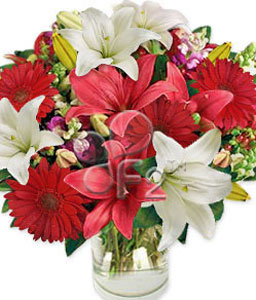 Wonder Wishes-Red,White,Daisy,Gerbera,Lily,Mixed Flower,Bouquet