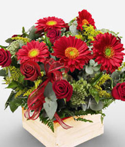 African Passion-Green,Red,Daisy,Gerbera,Rose,Arrangement