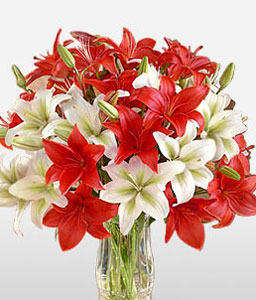 Pearly Titians-Red,White,Lily,Bouquet