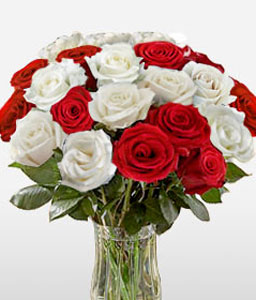 Ruddy Roses-Red,White,Rose,Arrangement