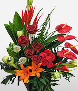 Guozijian Street-Mixed,Orange,Red,White,Anthuriums,Carnation,Gerbera,Lily,Mixed Flower,Rose,Arrangement