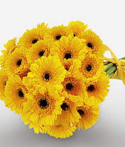Sunshine Love - Yellow Gerberas-Yellow,Gerbera,Bouquet