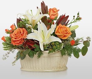 Amazing Grace-Orange,White,Daisy,Lily,Rose,Basket