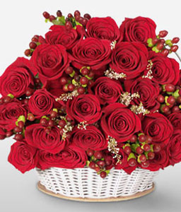 Medellin Magic-Red,Rose,Arrangement,Basket