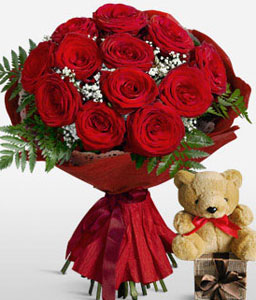 Red Hot Cuddles <Br><Font Color=Red>12 Red Roses And Free Teddy</Font>