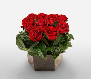 Tender Temptations-Green,Red,Rose,Arrangement